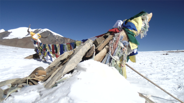 Dhaulagiri Base Camp Trek .png