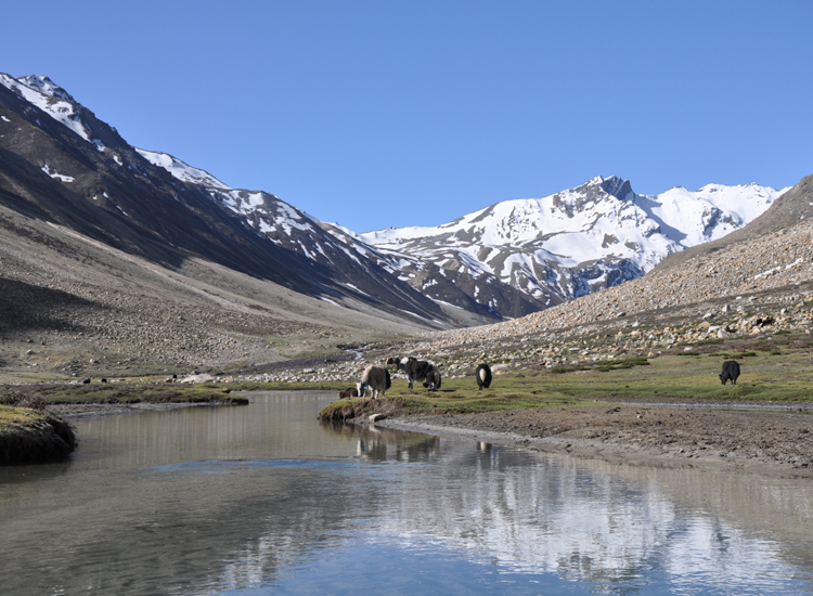 Limi Valley Trek